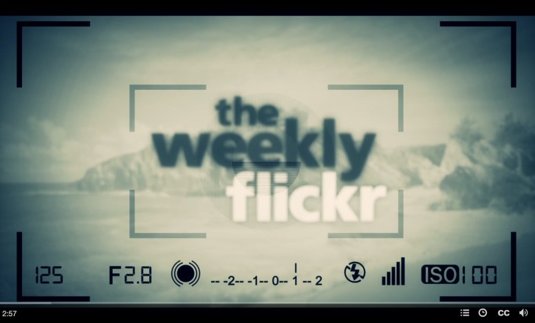 'The Weekly Flickr' Interview 2015