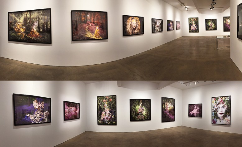 Wonderland Solo Show at Mead Carney Gallery, London. May - June 2015