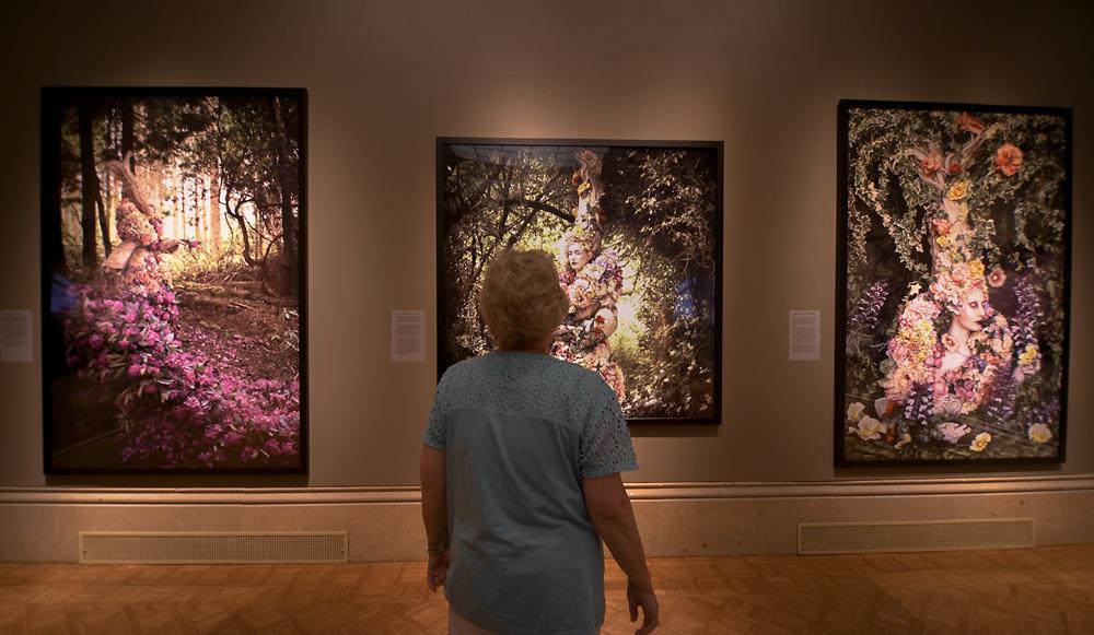 gallery viewer