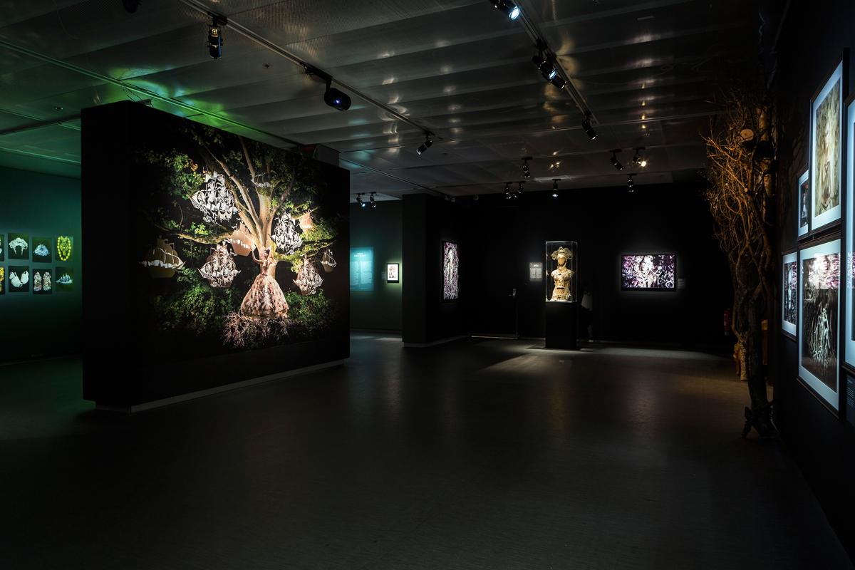 Wonderland at Fotografiska Museum, Stockholm.